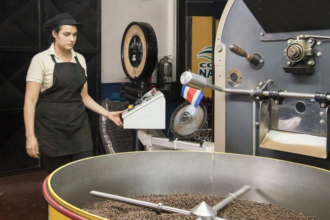 中南米にはコーヒー栽培に合った土地がたくさんありますね、<br />機構が合っているのでしょうねー、でもその地区によって苦味酸味香りなどそれぞれです。<br />コスタリカでは19世紀初頭よりコーヒーはコスタリカ人の主な収入源になっているそうです。<br /><br />こひーは世界最大のコーヒー会社スターバックスに卸されているとのことです。