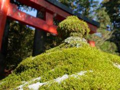 2015 落合楼村上 宿泊 箱根神社 初詣 からの 伊豆旅行記