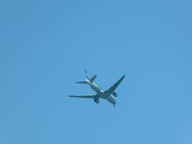 社員研修で木更津の竜宮城に行きました。<br />研修後に期待をしていなかったのですが、全室オーシャンビューのすばらしさを実感しました。<br />そうです。木更津は羽田に着陸する飛行機がかなり見える場所なのです。<br />部屋から撮った写真が多いのは、部屋で飛行機の音が聞こえると、飛んでいく飛行機のお腹が見えるという贅沢さ。<br />この寒さの中でも存分に楽しめました。