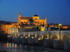 2014-15 年末年始 スペインの旅2 アンダルシア地方メスキータ・コルドバの旅 AVEで移動