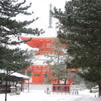 冬の和歌山 高野山~和歌山城
