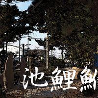 「東海道五拾三次」を歩く  四十、池鯉鮒 〜 鳴海