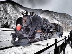 かたしな高原スキー場2015<SL新春レトロみなかみ号で行く>