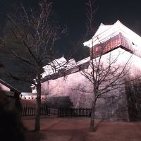 松山城で迎える2度目の正月