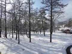 美しい雪景色の軽井沢 冬のバカンス♪ Vol5(第4日目)☆新雪の軽井沢プリンススキー場♪メインダイニングで優雅なランチ♪スパで新雪を眺めて♪