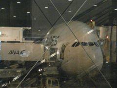 世界遺産の街ホイアン (1) シンガポール航空のA380でチャンギ国際空港へ、そしてトランジットホテルで仮眠・・・