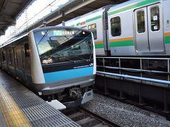 2015年1月大人の休日倶楽部パスの旅2(新潟経由で東京へ 後篇)
