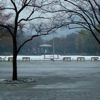 小雪降りのち小雨 日比谷公園