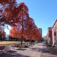 仙台旅行と名古屋旅行。結ぶは太平洋フェリー特等の旅。その6 名古屋ちょっぴり観光。