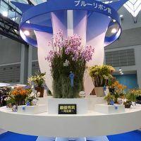 2015 第21回とうほく蘭展&バラとガーデンフェスタ =1 (会場 夢メッセみやぎ)  仙台市 宮城県