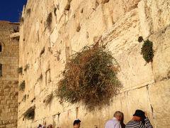 おじさんぽ・おばさんぽ ~本当はどんな国なのイスラエルって?の旅~Day3 イスラエル入国は「ノースタンプ」って言わなくてもノースタンプだった!