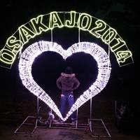 ちょっと大阪~大阪城3Dマッピングスーパーイルミネーション~