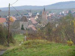 木組みのお家とクリスマスマーケットを廻る旅 【43】 リクヴィール、葡萄畑からも眺めて^^