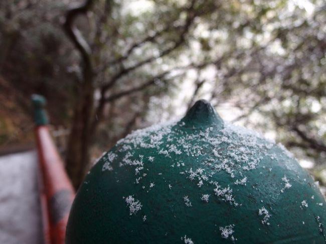 すっぽりと日本列島が寒波に覆われて、今が寒さもピークかしら。<br /><br />当日岐阜市の天気予報は、曇りで夕方から雪でした。<br />登山の間は、大丈夫であろうと、山歩会の山行で、岐阜市の金華山に登ってきました。<br /><br />金華山は、これで4度目。<br />この日のは、最初の間は、前回夫と登った同じコースでしたが、途中からは全く未知のコースで面白かったです。<br /><br />金華山は、ロープウエーでも登れます。<br />夜景スポットとしても知られています。<br /><br />http://www.kinkazan.co.jp/<br /><br />前回2013年に登った記録です。<br /><br />http://4travel.jp/travelogue/10754026