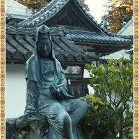 松島に牡蠣を食べに行こっか~~!?そして・・・瑞巌寺(ずいがんじ)にも初参拝!