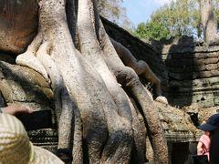☆カンボジア『シェムリアップ』Vacation☆ 『クメールの微笑み』に癒やされて。。  ~ こだわりの「タプローム」編 ~