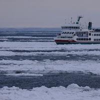 流氷に会いに道東へ【1】〜ようやく出会えたオホーツクの流氷〜