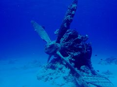デルタ航空ビジネスクラスで行くサイパン水中戦跡ダイビングツアー