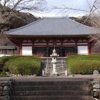 池田市久安寺へ蝋梅咲く庭園を見に行く 下巻