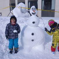 新潟・津南町日記2015雪だるま