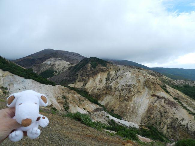 山形県から蔵王山を越えて宮城県に入ります。<br />蔵王を縦断する県道12号線を通りましたが、「御釜」は前に来た時にばっちり見えたので今回はパス...。<br />JOECOOL夫婦はやっぱり滝を見たい!<br />ということで再訪になりますが、「駒草平」から見える二つの滝『不帰の滝』&『振子滝』を見に行くことにしました。<br /><br />前回は2008年9月に訪れています→http://4travel.jp/travelogue/10273532