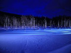 旅するイルカ♪ 冬の北海道へ Day2 Part2 青い池ライトアップ編