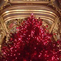 フランス、くるみわり人形の旅Part6 オペラガルニエのバレエ「泉」とルーブルの休日
