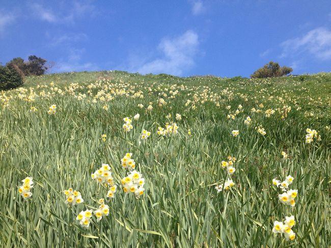 春の訪れを感じる淡路島で3年とらふぐづくし&温泉を満喫♪