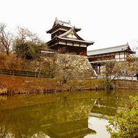 お城で開催される大和郡山盆梅展と城下町の大和な雛まつりを見に行ってきました!