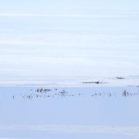 がっくりダイヤモンド富士~~まだ冬が残る忍野八海&山中湖&鳴沢氷穴&白糸の滝~~