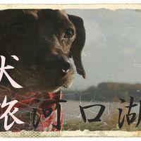 犬旅 ~河口湖~ Side-B