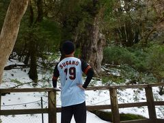 冬の屋久島に縄文杉を見に行った。