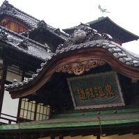 四国旅2015春③~食べて温泉入っただけの松山編