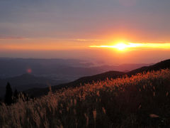 みかんに食い倒れ、和歌山の旅。~有田・湯浅~