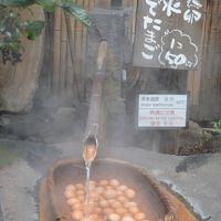 春うらら 九州をまわる旅:(2)黒川温泉2日目と阿蘇