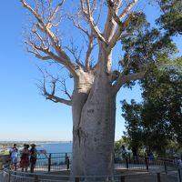 オーストラリア パース家族旅行 ①