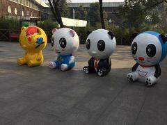 中国・成都でパンダを観る2015