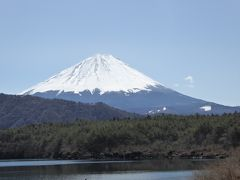 早春の箱根と富士五湖の旅♪ Vol.15(第3日目)☆早春の西湖と富士山の美しい競演♪