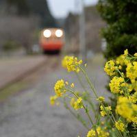 出張のついでに小湊鉄道に乗って養老温泉