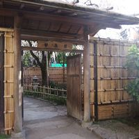講談社野間記念館から早稲田の甘泉園公園のしだれ桜散策