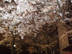 春の奈良・京都・大阪