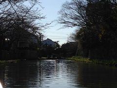 花見にはちょっと早かった近江八幡