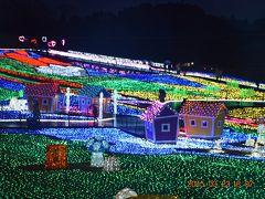 """千葉にあっても""""東京""""ドイツ村のウインターイルミネーション2014"""