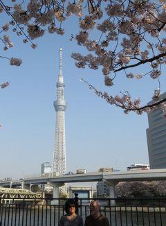 東京台東区さくら祭り・・隅田川の桜と東京スカイツリーをめぐります