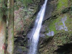 2015春、四国周遊の旅(4):3月29日(4):徳島、祖谷(いや)渓、かずら橋、琵琶の滝