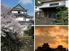 はるばると東京から和歌山へ ー 留学生と会い、和歌山城で夜桜見学