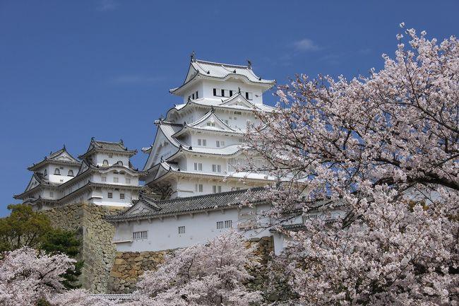 3月27日にグランドオープンした姫路城。<br />関西でも先週からの暖かさで一気に桜が満開になり、兵庫県民としては花見といえば姫路城。<br />しかも満開時期の週末は天気が悪く、土曜日は何とか陽も出るとの天気予報をあてにして出かけてきました。<br />ほぼ天気予報通り、12時前後に晴れたので満開の桜に覆われた絶景の姫路城を見ることができました。<br />今回は桜に覆われた姫路城を中心に紹介します。
