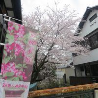 長浜「大通寺・馬酔木展」を観賞して、北国街道をブラブラする。