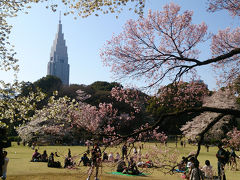 2015年3月 満開の桜めぐり♪赤坂見附~新宿御苑~豊島園♪