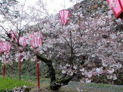 2015春、四国周遊の旅(5):3月29日(5):徳島から高知へ、高知で泊まったホテル、高知城